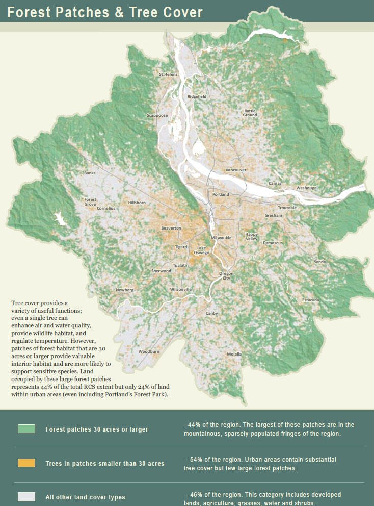Image 20 Biodiversity Guide A5 Forest Patches and Tree Cover – The