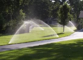 Sprinklers.Photo—Katti&Gupta