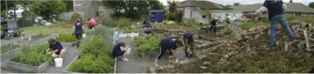 Volunteers from Pegasus Health helping at Fitzgerald Ave community garden, Dec 2012 http://greeningtherubble.org.nz