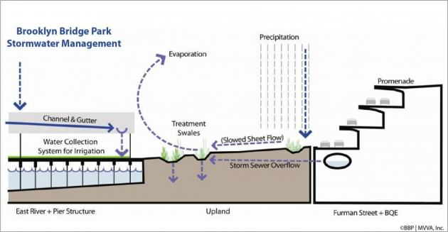 Diagram of storm water management system in Brooklyn Bridge Park. Credit: Brooklyn Bridge Park Conservancy/ Michael Van Valkenburgh Associates