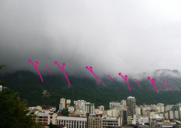 Dynamique du cycle de l'eau, de la forêt aux nuages. Pierre-André Martin