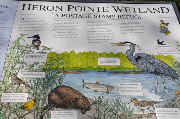 Heron Pointe Interpretive Sign. Photo: Mike Houck
