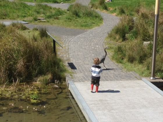 Child with Great Blue Heron at Tanner Springs. Photo: Mark Wheaton