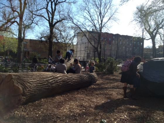 CP Tree Play_5