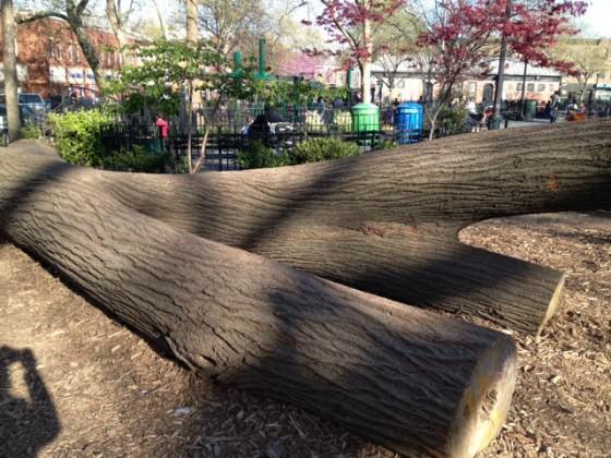CP Tree Stays_4