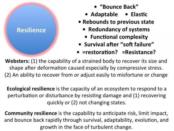 ResilienceDefs