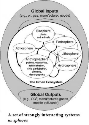 A Set of strongly interacting systems or spheres.  http://www.forestrynepal.org/notes/biodiversity/introduction/conservation-biology/urban-ecology