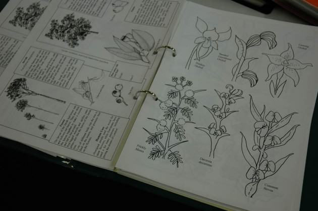 A booklet of plant species names. Photo: Tim Beatly