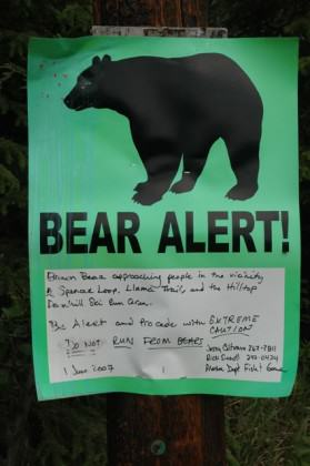 A sign at a trailhead warns people about recent brown bear activity. Photo: Alaska Department of Fish and Game