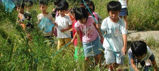 Children's activity in the school biotope. Finding small insects and herbs, 2005. Photo: K. Hidaka