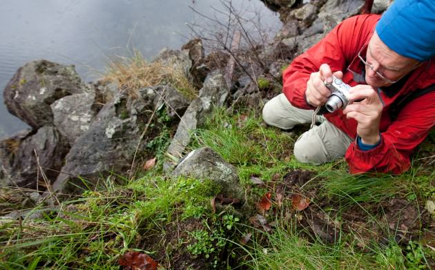Photographing a rough-skinned newt.  Photo by Mary Sanseverino.