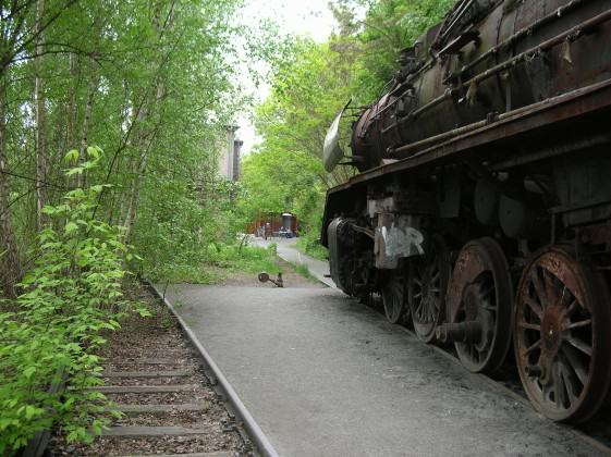 The Schöneberger Südgelände, was an originally desolate freight railyard built between 1880–1890, mostly abandoned since1952. Photo: Ana Faggi