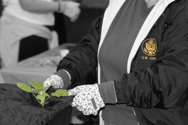 army jacket green plant yello emblem
