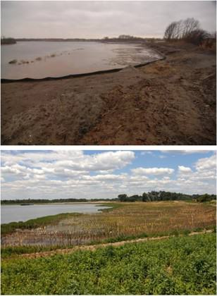 Gerritsen Creek, New York, before (upper image) and after (lower) restoration. Images courtesy of New York City Department of Parks and Recreation (NYC DPR)