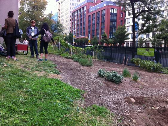 Fazenda Urbana NYU: estudantes encerrando o dia de trabalho. Photo: Cecilia Herzog