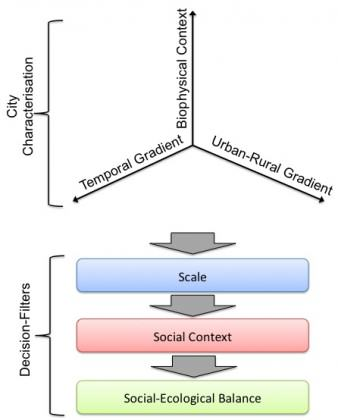 The stages of determining biodiversity goals across the urban nature continuum. First, the position of the city is determined by assessing the three axes: urban-rural gradient, temporal gradient, and biophysical context. Then the three filters of scale, social context and social-ecological balance are applied. Credit: C. Ives