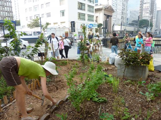 "Claudia Visoni one of the co-founders of ""Hortelões Urbanos"" working in the vegetable garden in the financial district of São Paulo, over a tunnel in a central area between an extremely busy street, Avenida Paulista. Photo: Cecilia Herzog"