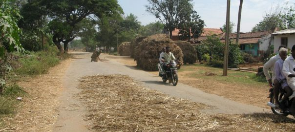 Photograph 1: Farmers in a rural Indian village spread a millet crop on the road, so that urban motorists can drive their vehicles onto the dried ears, crushing them to make it easy to remove the loosened grains. Thus, rural areas take advantage of their connection with cities to reduce the manual labor involved with manual threshing of crops. Photo: Harini Nagendra