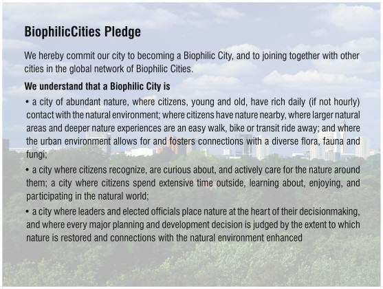 Pledge_1