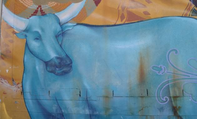 Rural livelihoods_cattle