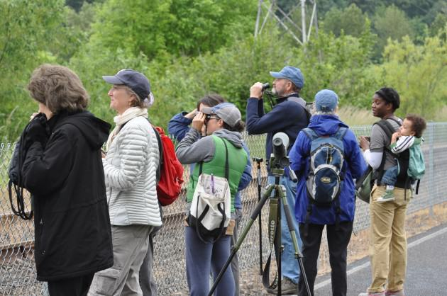 Social benefits such as birdwatching, community interaction, and environmental literacy are seldom, if ever, calculated in ecosystem services analyses