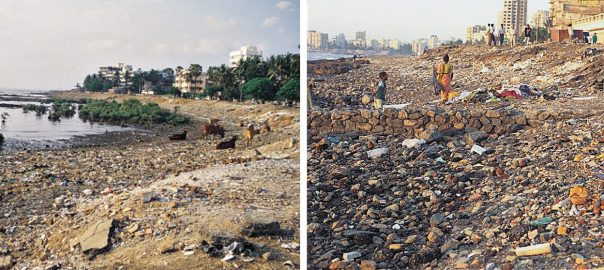 Mumbai's seafronts as dumping grounds. Photos: PK Das