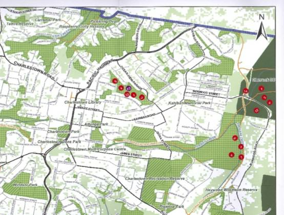 An example of a returned map from the Lower Hunter open space survey. The numbered red dots are stickers placed by a survey participant, showing the green spaces that are valued for different reasons.