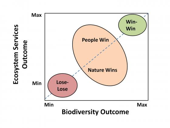 Fig. 1 Conceptual diagram showing how decisions made entirely within a single ideology can result in win-lose situations, and therefore highlighting the importance of balancing the two ideologies in order to deliver a win-win situation.