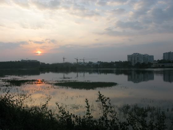 Harini-Nagendra-The-recently-restored-Kaikondrahalli-lake-in-Bangalore-restored-with-community-participation. Photo: Harini Nagendra