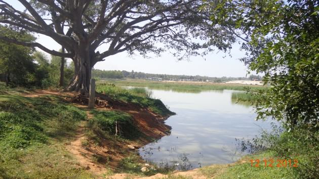 Manjunath-B-An-intact-peri-urban-lake-managed-by-the-local-village.jpg