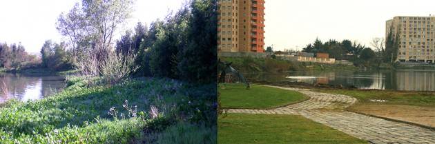 Figure 1. Variation in the management and design of meadow areas in Tres Pascualas Lagoon, Concepción. Photos: Paula Villagra
