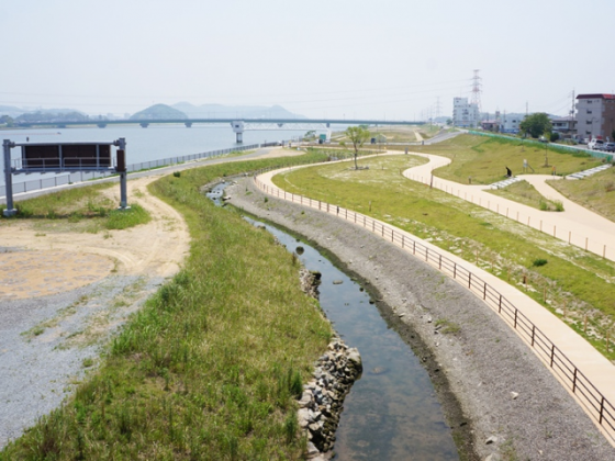 The site is gradually covered with grasses and challenging for more biodiversity. Upper part, 2013. Photo: Keitaro ITO