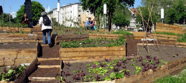 Urban agriculture is not only about food: Freiburg. Source: Wikimedia Commons