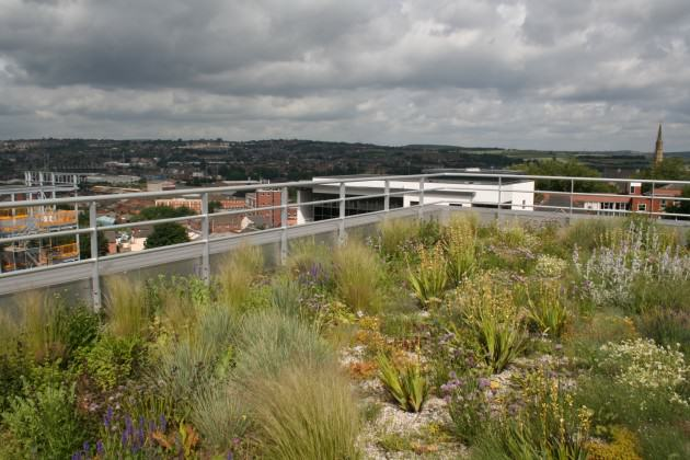 Green Roof on the top of industrial building in Sheffield, 2007