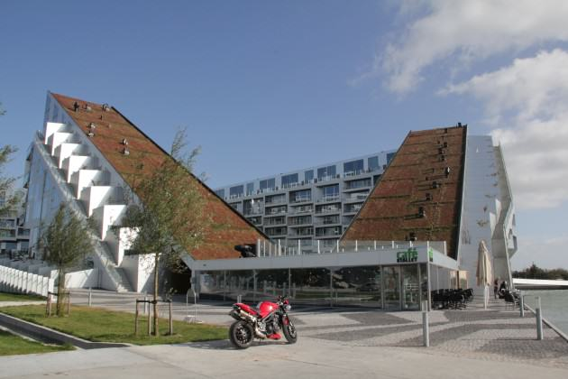 Picture 2. Sedum green roof in 8-Tallet Building in Copenhagen, 2011