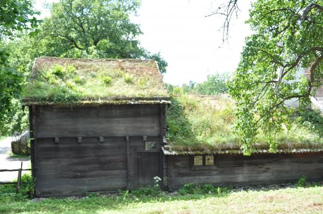 One of the Skansen Museum traditional green roofs, 2013