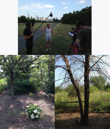 Liberty State Park in 2014. Left to right: Lisa Simms of New Jersey Tree Foundation speaks to the filmmakers; trees that sustained damage during Sandy; guerilla planting in the understory. Credit: Living Memorials Project National Registry.