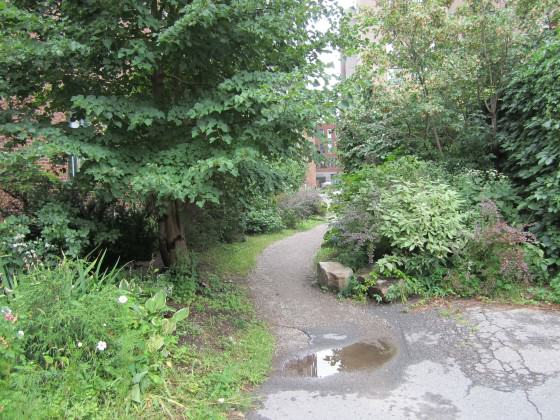 Parc Oxygene, Montrea. Photo: Janice Astbury