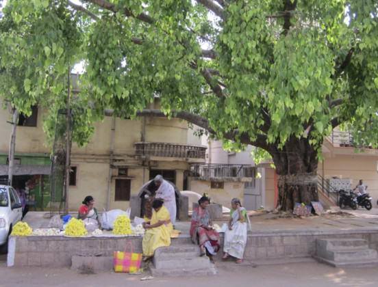 Flower vendors (left) and two women (right) having a chat, under the canopy of a sacred space in a residential locality of Bangalore. Photo: Divya Gopal.