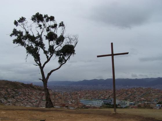 El palo del ahorcado (The hanging tree). Photo Diana Wiesner