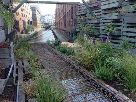 What regeneration of the canal landscape could look like? (The backdrop is a photo of the sort of regeneration that is going on just behind this greener space created in the corner of a car park in Manchester. Photo; Janice Astbury