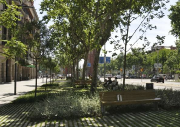This stretch of Passeig Sant Joan is part of the urban green corridor connecting Ciutadella Park with the Collserola Mountain Range