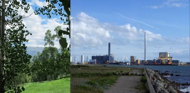 LEFT: Quaking Aspen forest. Courtesy of Whitney Hopkins. RIGHT: Industrial area of Kalundbork, Denmark. Photographer Unknown. License: PD - Public Domain