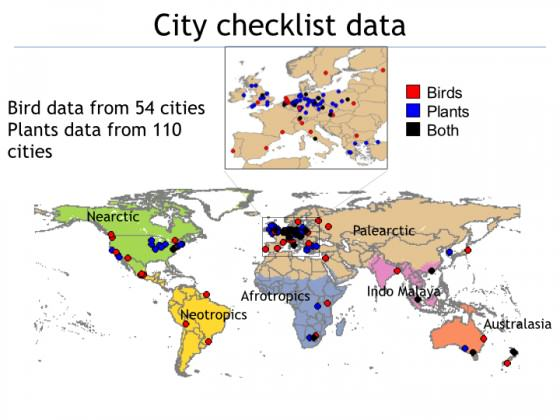 Cities with city-wide plant and bird data.