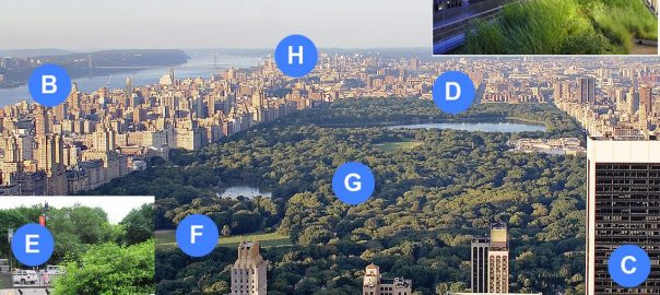 The Urban Microbiome. Microbes in the city can be found in the atmosphere (A), water (B), buildings (C), roads (D), subways (E), soil (F), vegetation (G), combined sewer overflow (CSO) outfalls (H), and green roofs (J). Background Image: Alfred Hutter