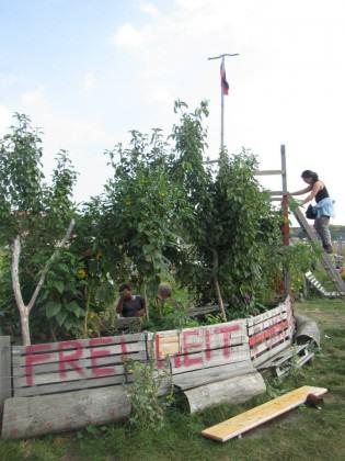 Tempelhofer Feld Community Gardens 2