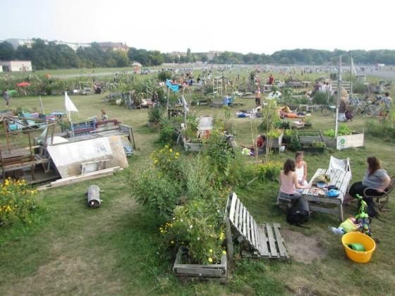 Community gardens and recreational spaces, Tempelhofer Feld, September 2014. Photos: Katharine Burgess