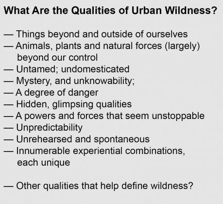 Beatley--What Qualities Urban Wild