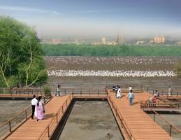 Integrating wetlands in Mumbai.