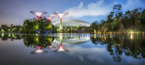 Garden by the Bay, Singapore. Design credit: Grant Associates. Photo: Darren Chin